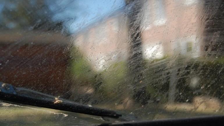 honingdauw op auto