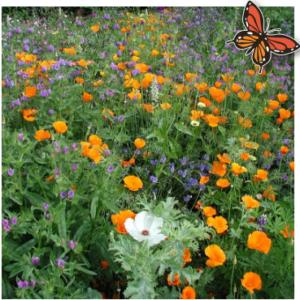 bloemenmengsel middel